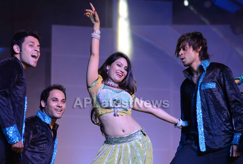 RDB - Live concert held at Baisakhi Celebrations 2013 - Picture 13