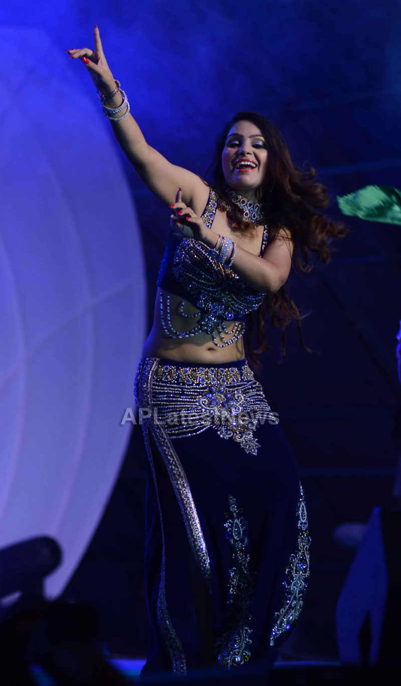 RDB - Live concert held at Baisakhi Celebrations 2013 - Picture 10