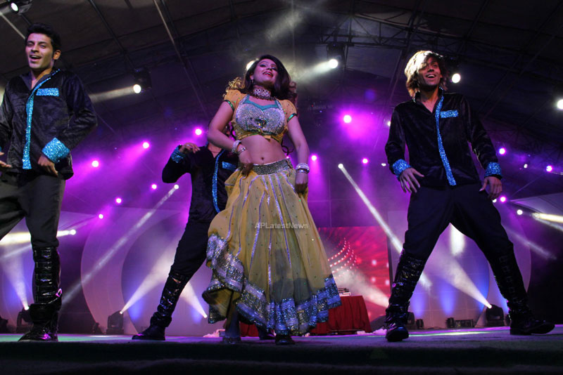 RDB - Live concert held at Baisakhi Celebrations 2013 - Picture 12
