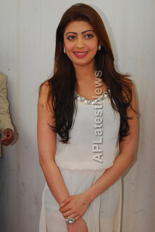 Homeo Trends Hospital Opened Inaugurated by Tollywood Actress Pranitha - Picture 13