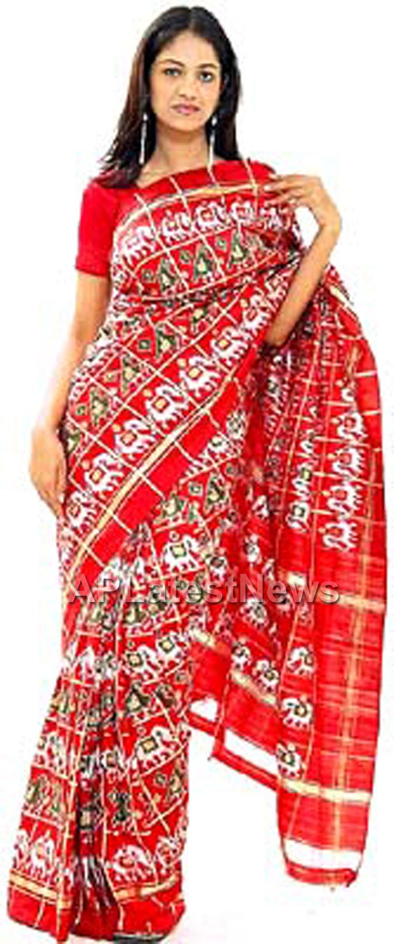 Pochampally IKAT Mela 2013 - Somajiguda - Picture 3