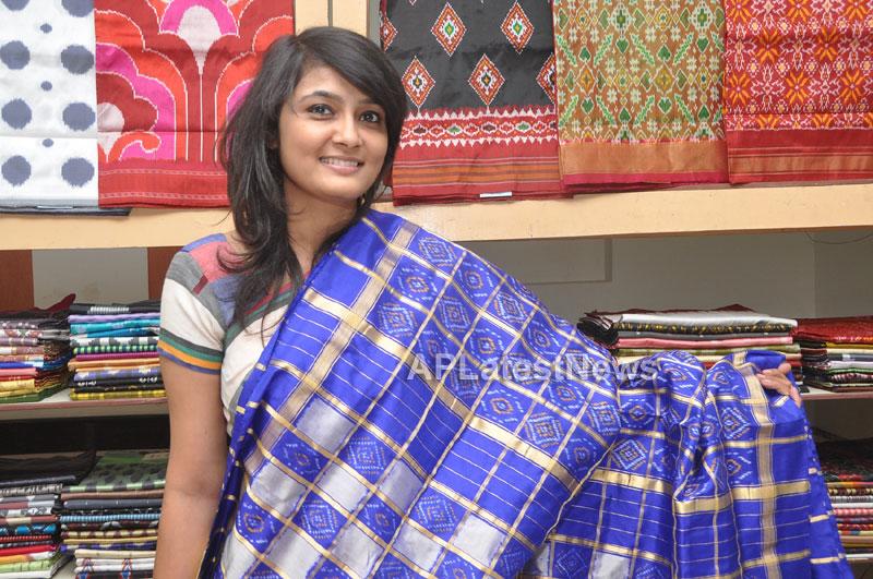 Pochampally IKAT Mela 2013 - Somajiguda - Launched by Chiranjivulu - Picture 8