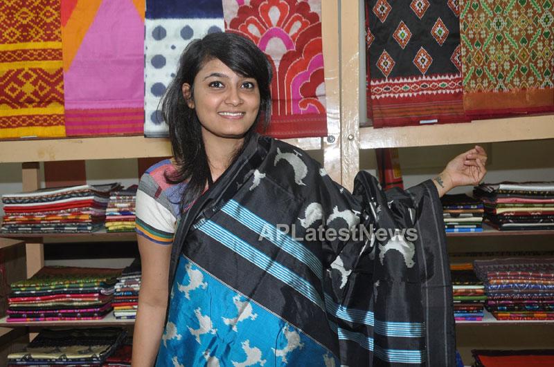 Pochampally IKAT Mela 2013 - Somajiguda - Launched by Chiranjivulu - Picture 9