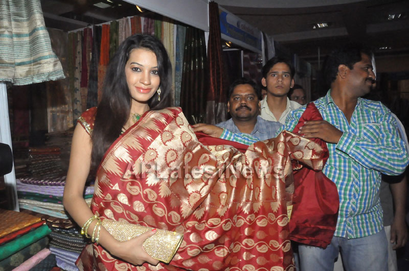 National silk and cotton expo Inaugurated by Actress Diksha panth - Picture 12