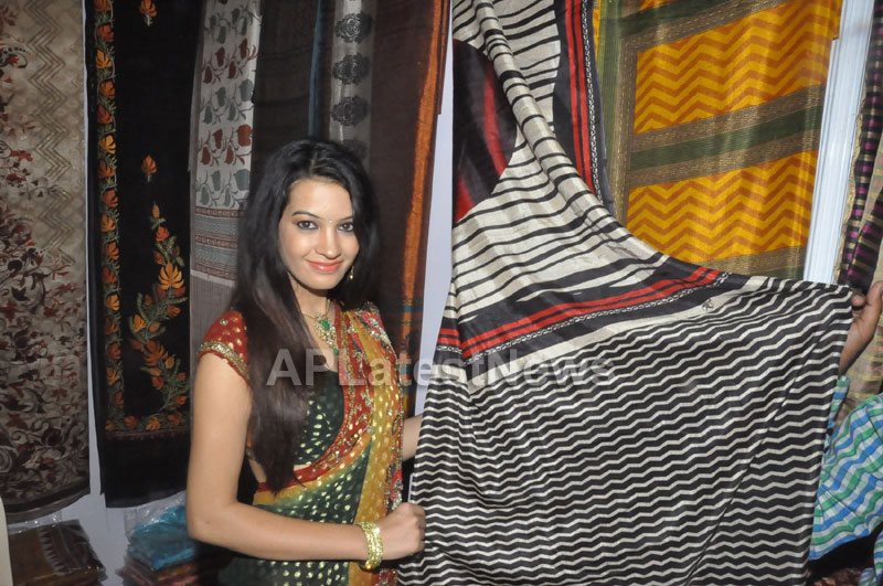 National silk and cotton expo Inaugurated by Actress Diksha panth - Picture 3