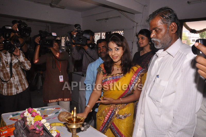 Pochampally Ikat Art Mela at Y.W.C.A by Sri Lekha and Hanumanth Rao - Picture 2