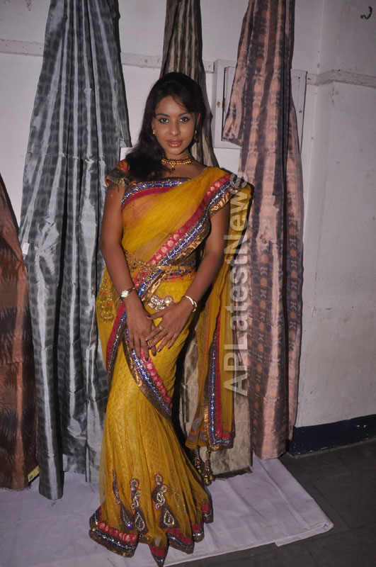 Pochampally Ikat Art Mela at Y.W.C.A by Sri Lekha and Hanumanth Rao - Picture 6