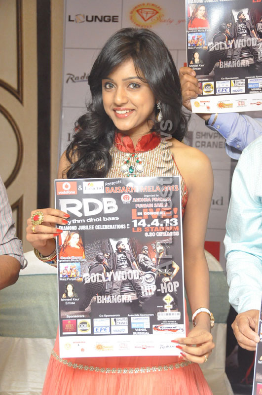 RDB(Rhythm Dhol Bass) - Live Concert to be held at LB Stadium(Baisakhi Mela) - Picture 9