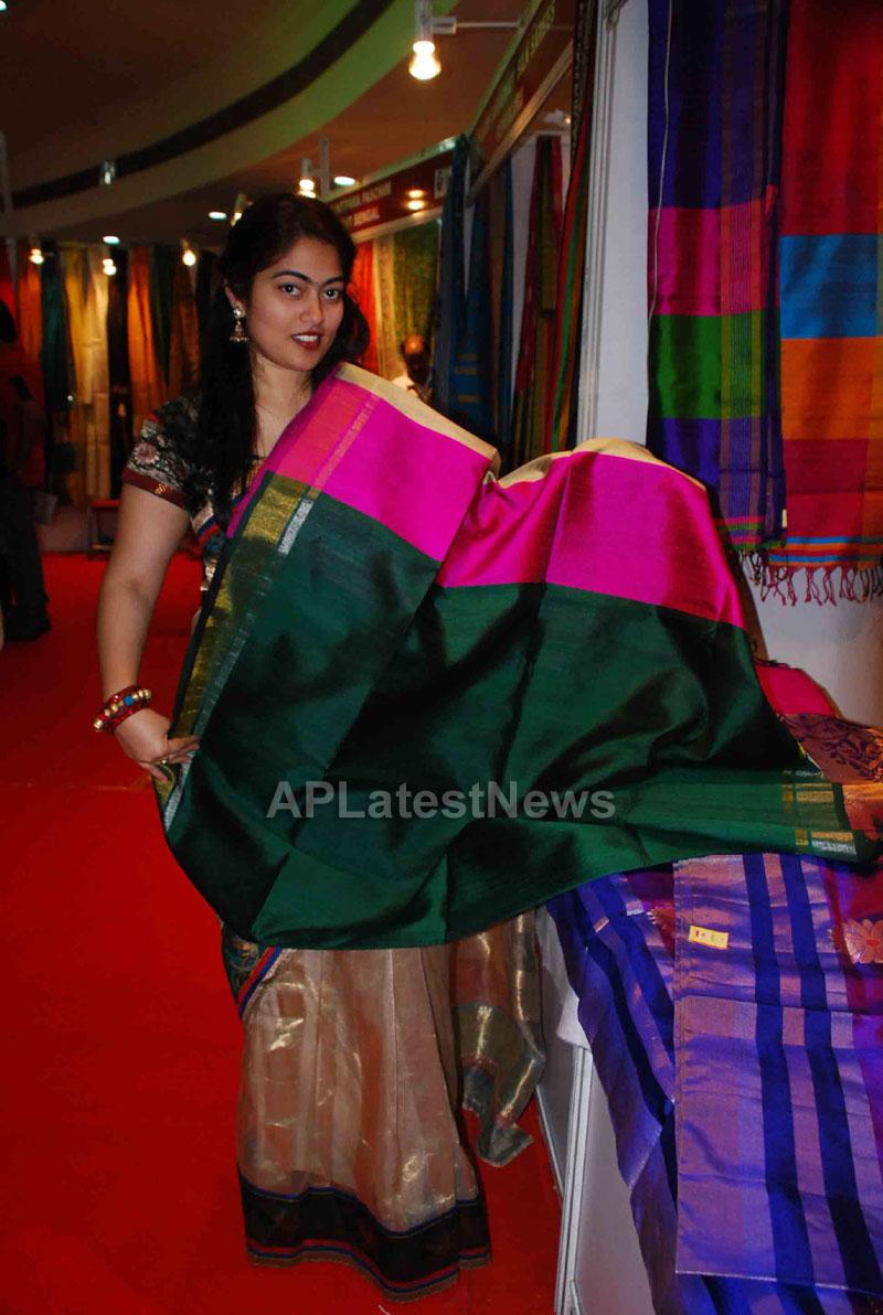 Silk Mark Expo Inaugurated by Vimala Narsimhan at Shilpakala Vedika, HYD - Picture 6