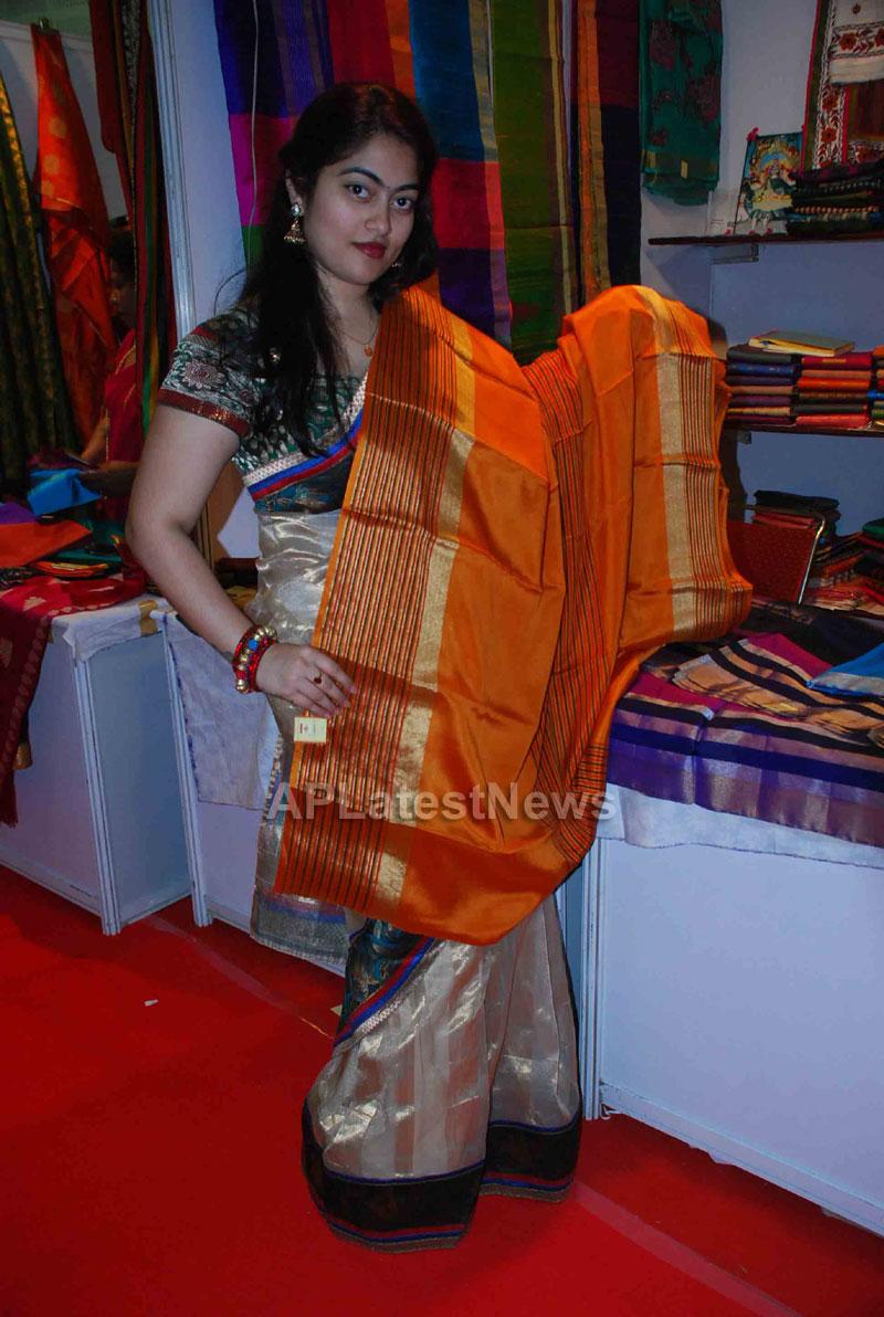 Silk Mark Expo Inaugurated by Vimala Narsimhan at Shilpakala Vedika, HYD - Picture 5