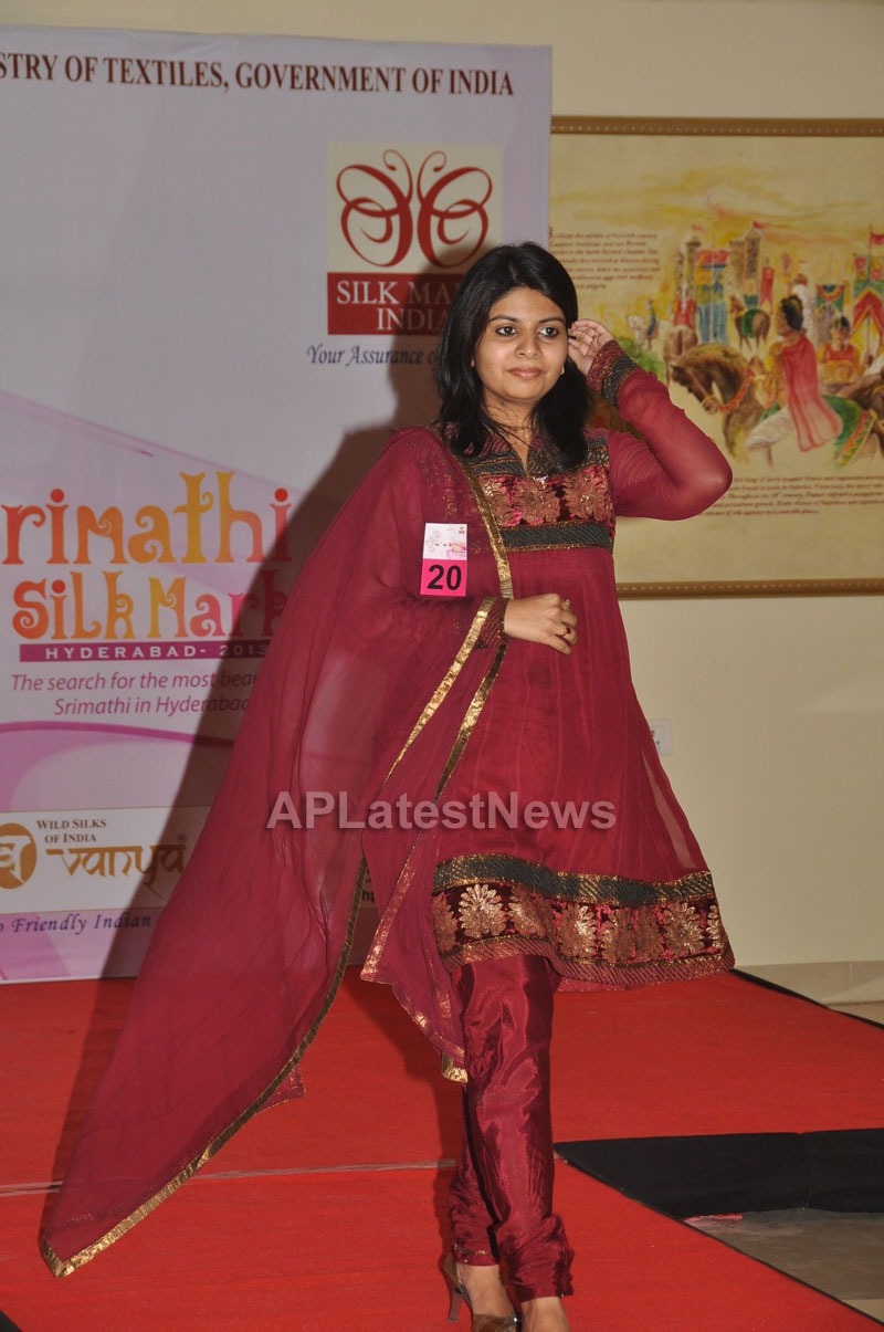 Srimathi Silk Mark, Hyderabad 2013 Auditions held - Picture 4