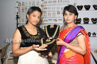 Styles N Weaves expo kicked off, Ameerpet, Hyderabad - Picture 25