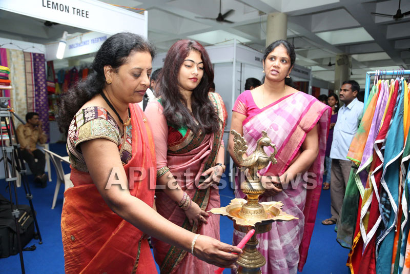 Styles N Weaves Expo - Inaugurated by Dr. Seetha and Shravani - Picture 14
