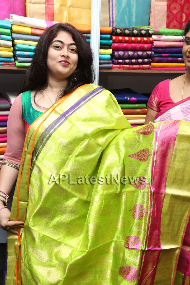 Styles N Weaves Expo - Inaugurated by Dr. Seetha and Shravani - Picture 23