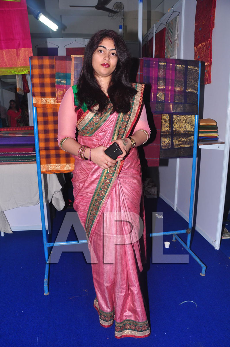 Styles N Weaves Expo - Inaugurated by Dr. Seetha and Shravani - Picture 4