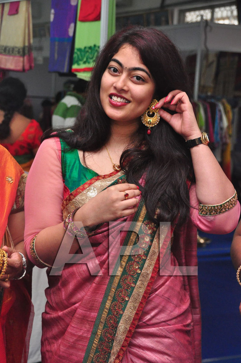 Styles N Weaves Expo - Inaugurated by Dr. Seetha and Shravani - Picture 15