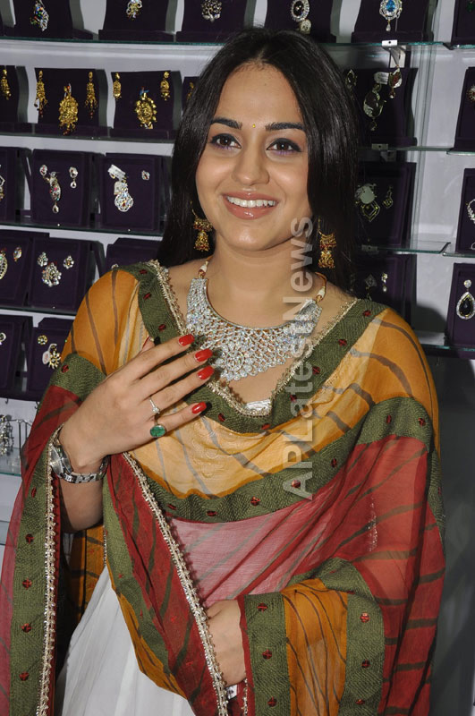 Trendz - Summer Fashion Exhibition 2013 - Inaugurated by Actress Aksha - Picture 12