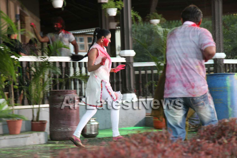 Veena Malik in the colour of Holi - Picture 13