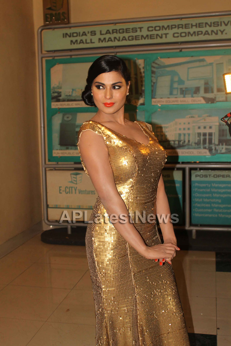 Veena Malik at Supermodel movie premiere, Fun Republic, Mumbai - Picture 19
