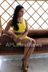 Veena Malik mobbed during the promotion of movie Zindagi 50:50  - Picture 6