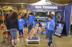 Annual Bay Area Pet Expo at Santa Clara County Fairgrounds, San Jose, CA, USA - Picture 6
