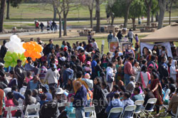 Annual India Republic Day Celebration and Festival, Fremont, CA, USA - Picture 8