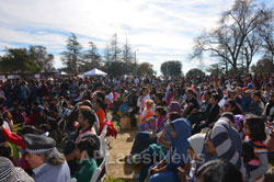 Annual India Republic Day Celebration and Festival, Fremont, CA, USA - Picture 11