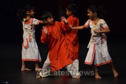 India Republic Day Celebration by FOG at McAfee Center, Saratoga, CA, USA - Picture 6