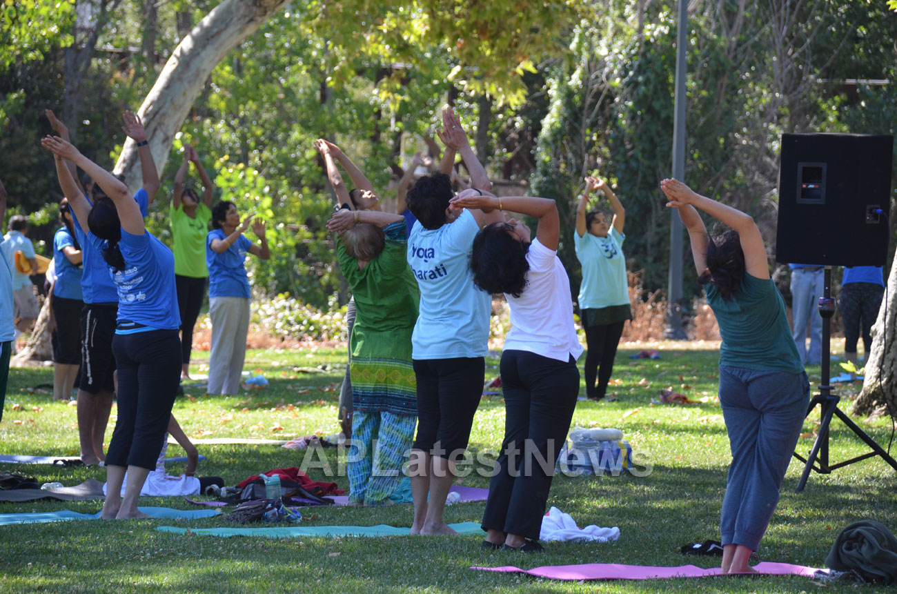 Sevathon by India Community Center, San Jose, CA, USA - Picture 6