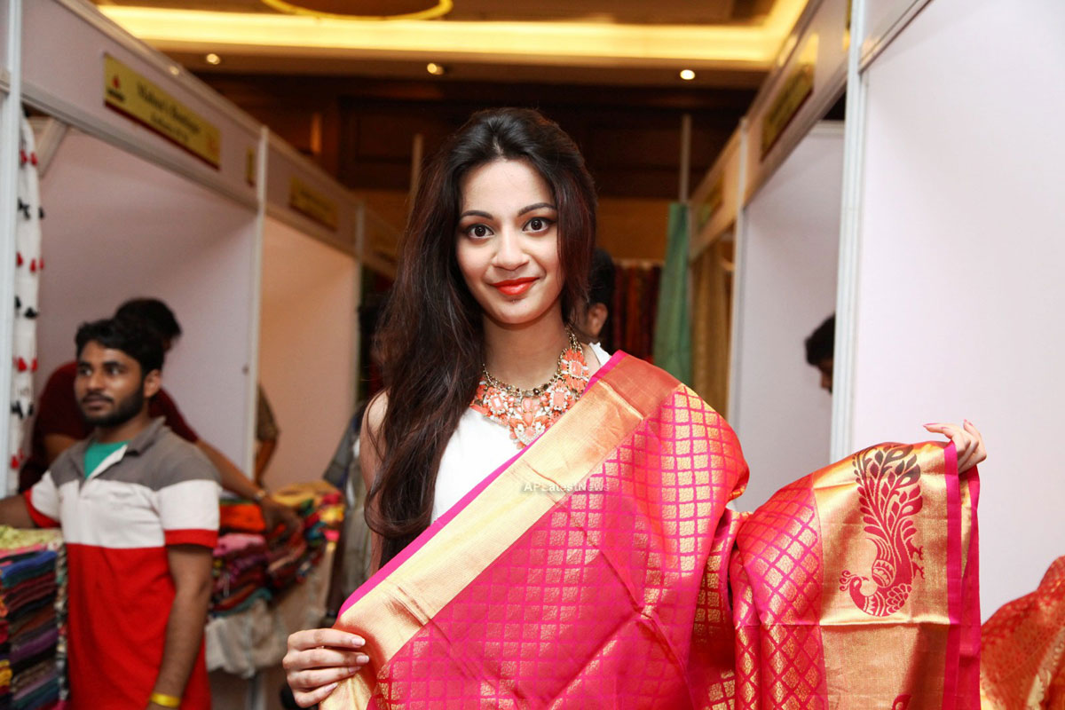 Silken Splendour in Vizag City - Former Miss Vizag Dr Sindhura Inaugurates Silk India Expo - Picture 5