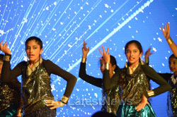 Telangana Cultural Festival(1st Anniversary celebrations) by TATA, Milpitas, CA, USA - Picture 4