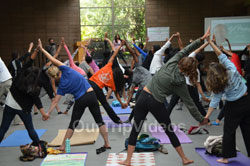 Celebration of 2nd International Day of Yoga, San Francisco, CA, USA - Picture 7