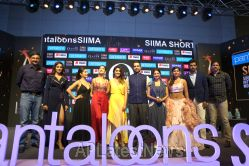 Film Celebrities at SIIMA 2019 Curtain Raiser, Hyderabad, TS, India - Picture 25