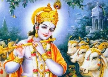 భీష్ముడు అంపశయ్య మీద ఉండి క్రృష్ణయ్య నేను కూడా కారణజన్ముడినే గదా