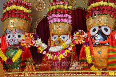 బే ఏరియా సిలికాన్ వాలీ(శాన్ ఫ్రాన్సిస్కో) లో జగన్నాధుని రధయాత్ర మహోత్సవాలు