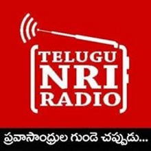 Telugu NRI Radio - Online News Paper -  views